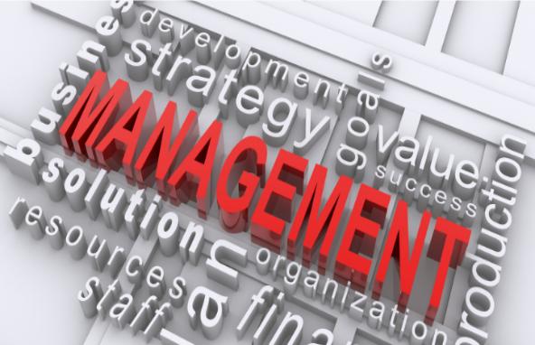マネジメント層とは?役割や育成方法をご紹介